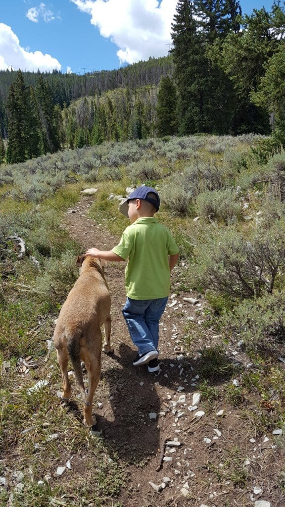 Free Summer Activities in Summit County Colorado,Hiking