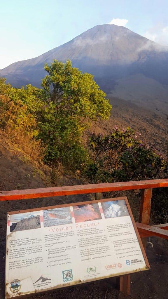 Pacaya Volcano Hike - one last look before heading down