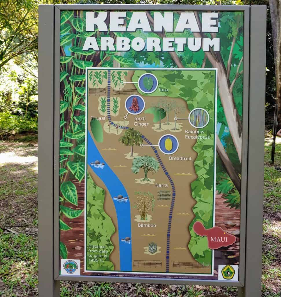 Map of the Keanae Arboretum along the road to Hana