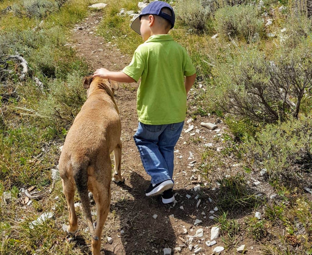 boy on a trail in the mountains petting a dog