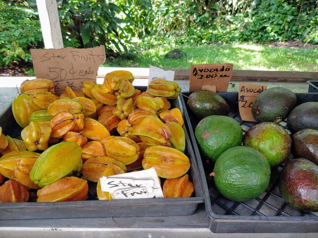 star fruit and avocado at a fruit stand in Hawaii