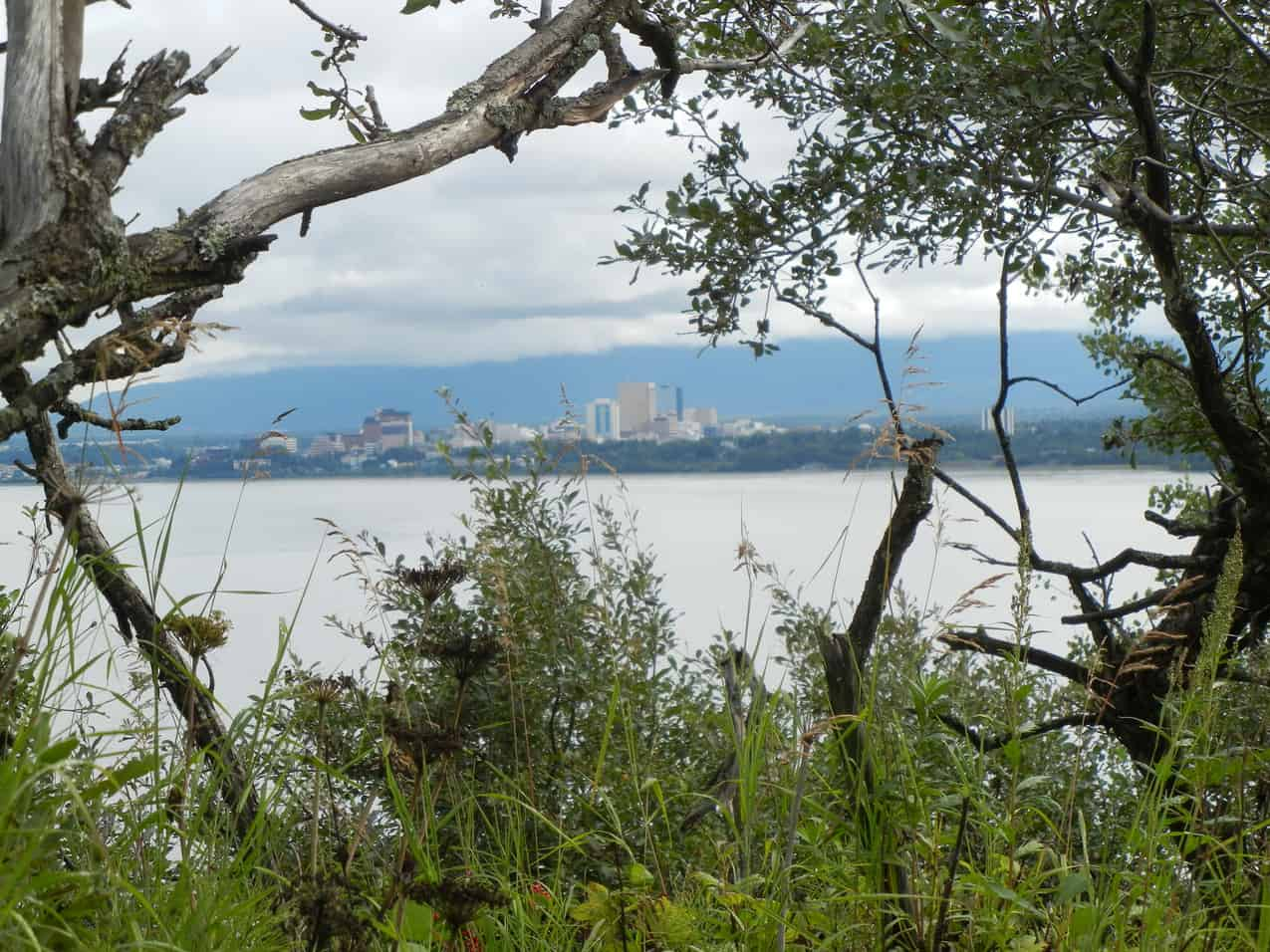 View of Anchorage, Alaska through the trees and over the water