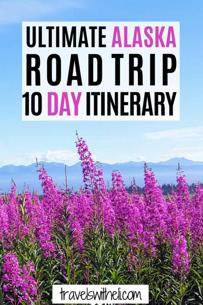 fireweed in front of mountains - Alaska Road Trip 10 Day Itinerary