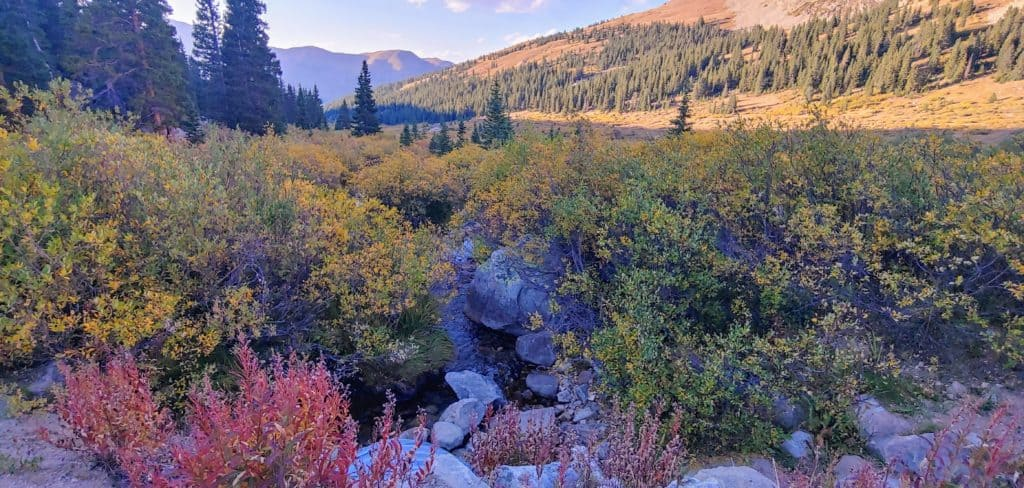 Bright fall colors around a creek with mountains in the background at Mayflower Gulch Colorado